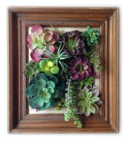 Vertical Succulent Wall Art. February 23, 2016. Screen Shot 2016 02 23 At  12.57.01 PM